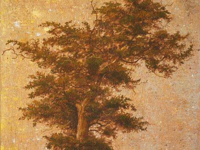 Paula Kane | Copper Tree