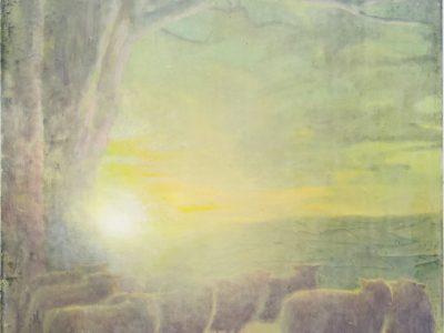 Sam Douglas | Low arc of the sun