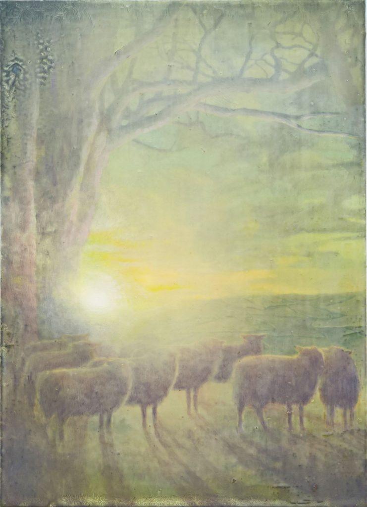 Sam Douglas   Low arc of the sun