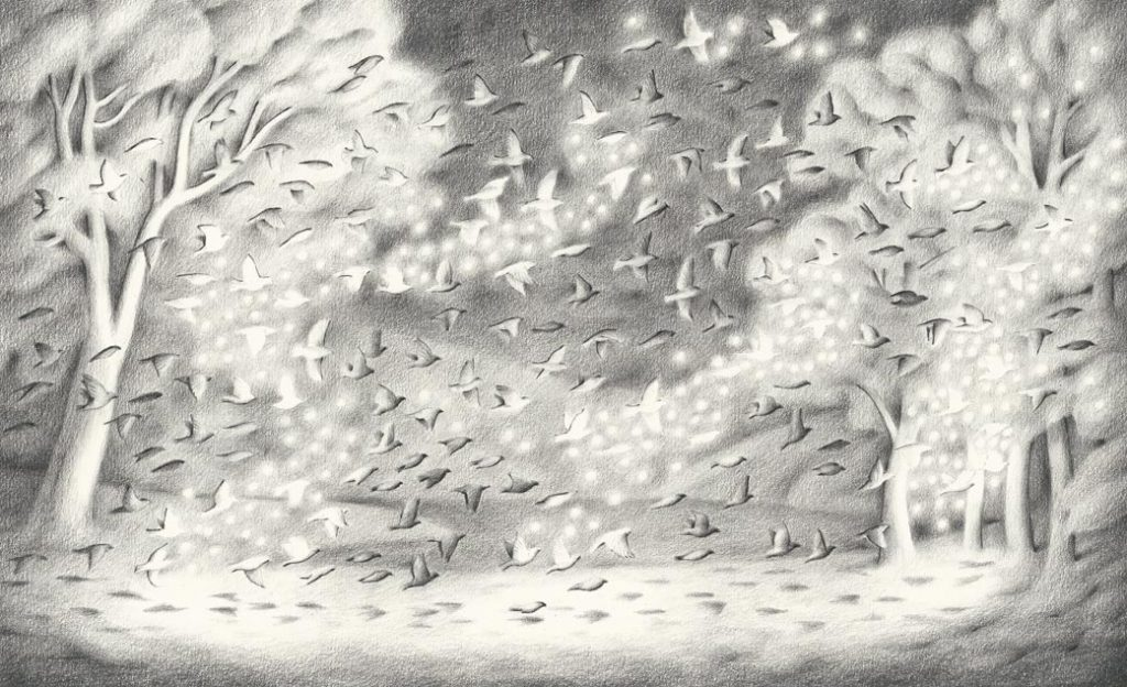 Sam Branton | Birds with lightning bugs