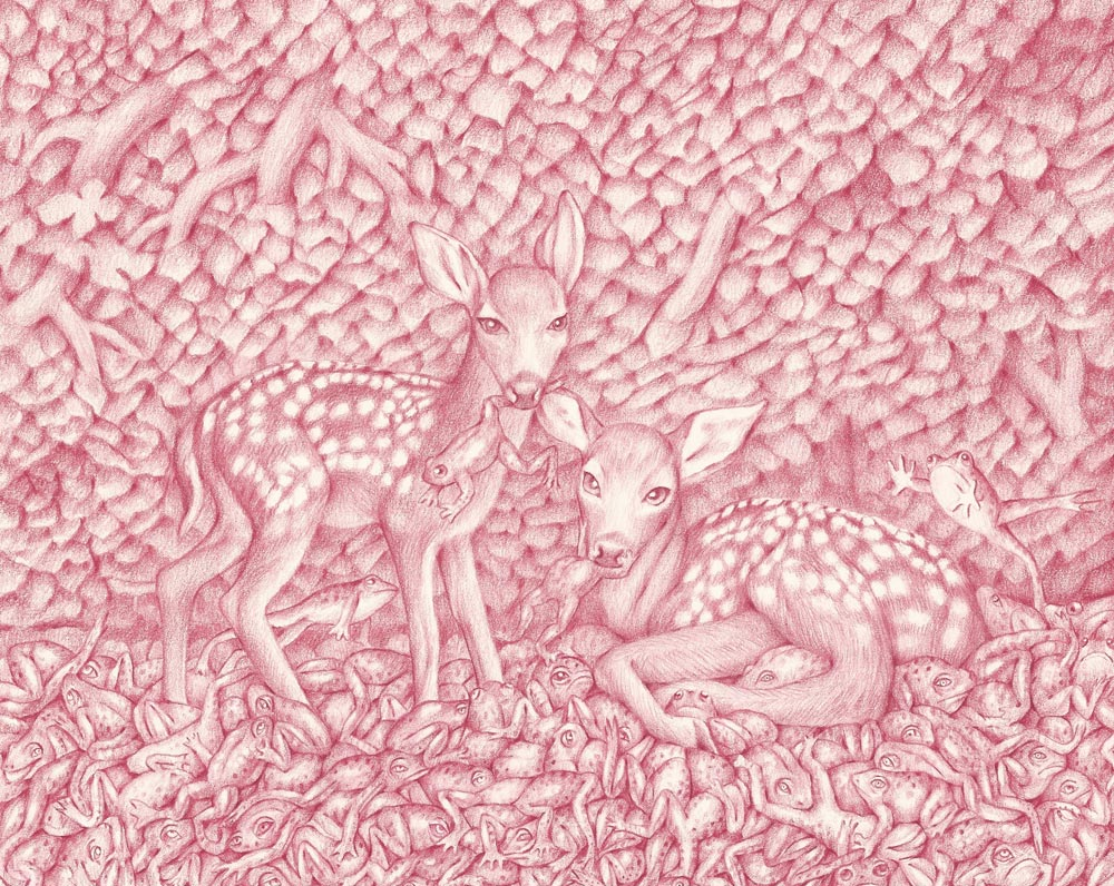 Sam Branton | Two fawns eating frogs