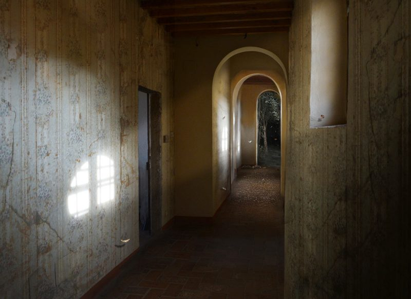 Suzanne Moxhay  | Cloister