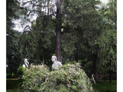 Liane Lang | In the Bush