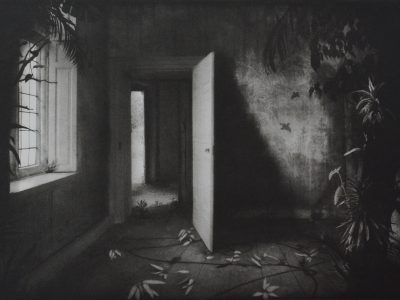 Suzanne Moxhay | Room with Vines