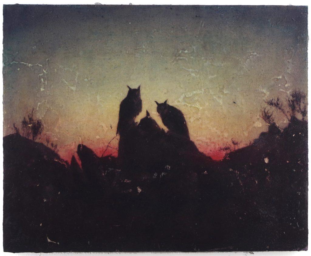 Fiona Finnegan   The Last Sunset