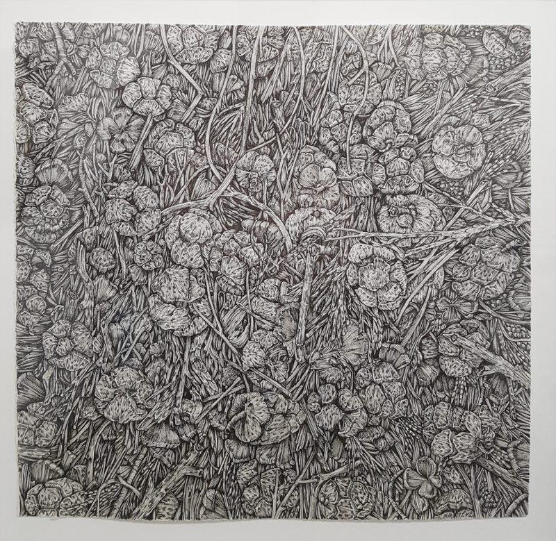 Olivia Kemp  | Cypress Debris
