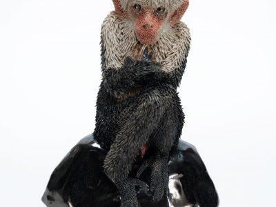 Carolein Smit | Monkey