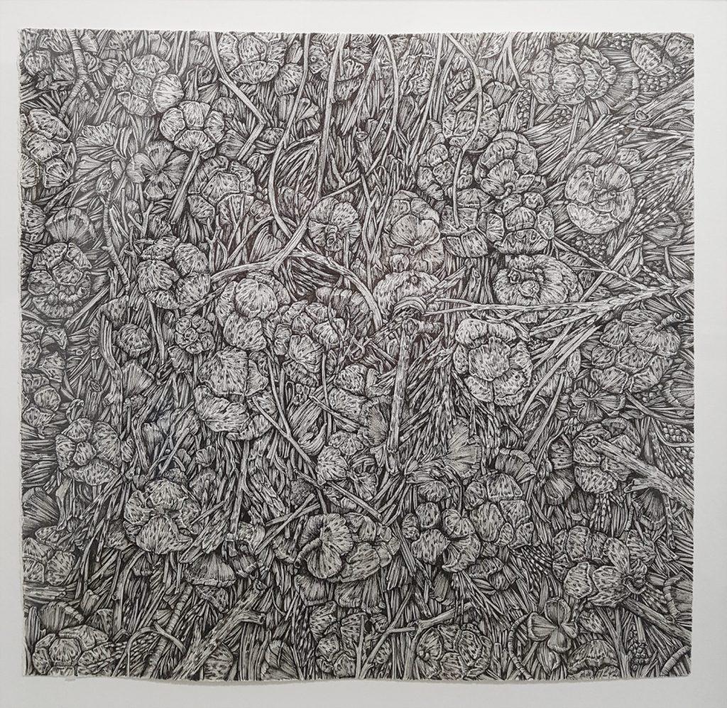 Olivia Kemp: Detail