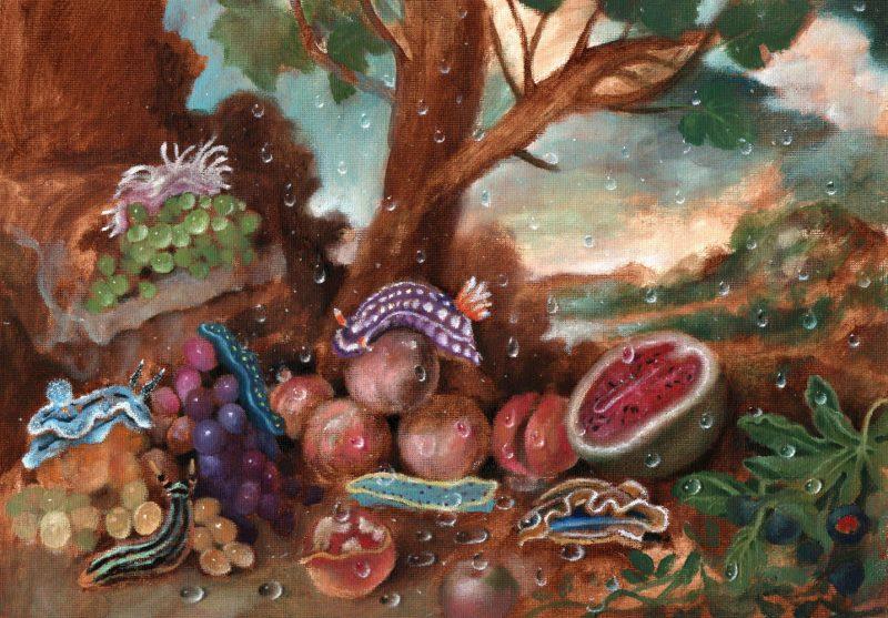 Sam Branton  | Still Life with Sea Slugs